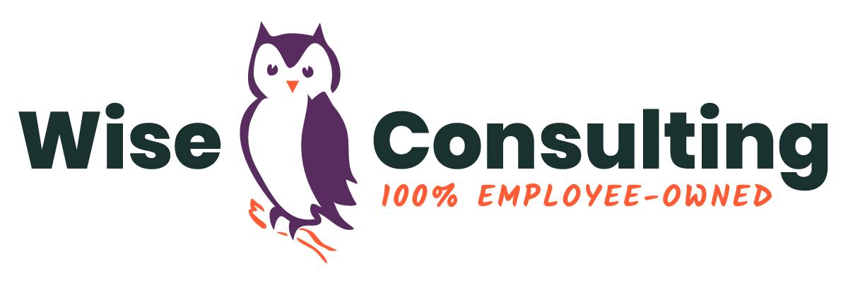 Logotype for Wise Consulting featuring a graphical representation of owl